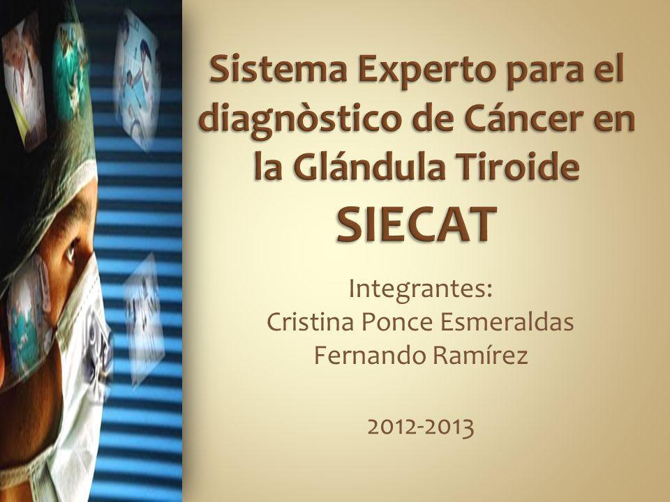 Integrantes: Cristina Ponce Esmeraldas Fernando Ramírez 2012-2013