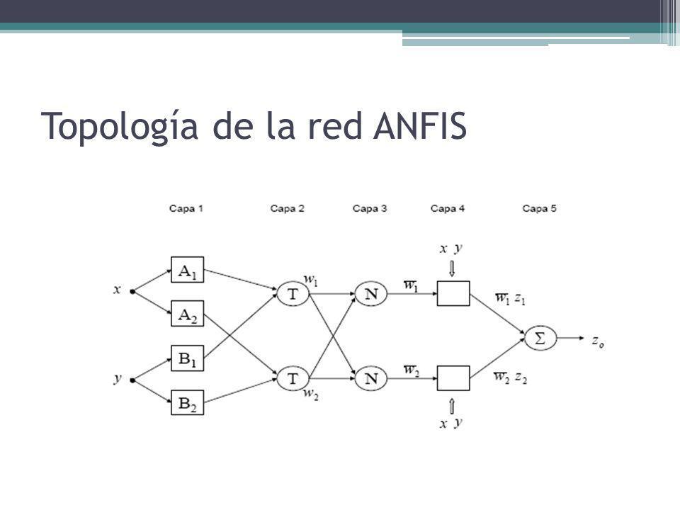 Topología de la red ANFIS