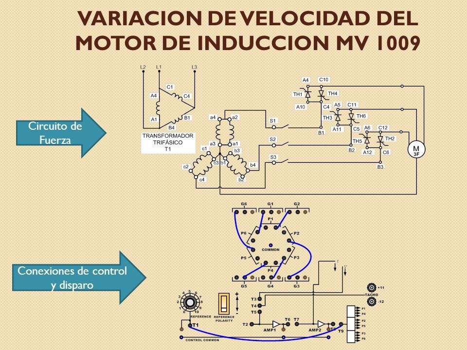 VARIACION DE VELOCIDAD DEL MOTOR DE INDUCCION MV 1009 Circuito de Fuerza Conexiones de control y disparo