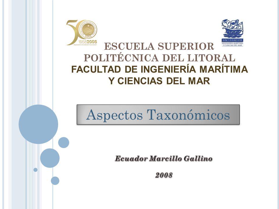 ESCUELA SUPERIOR POLITÉCNICA DEL LITORAL FACULTAD DE INGENIERÍA MARÍTIMA Y CIENCIAS DEL MAR Aspectos Taxonómicos