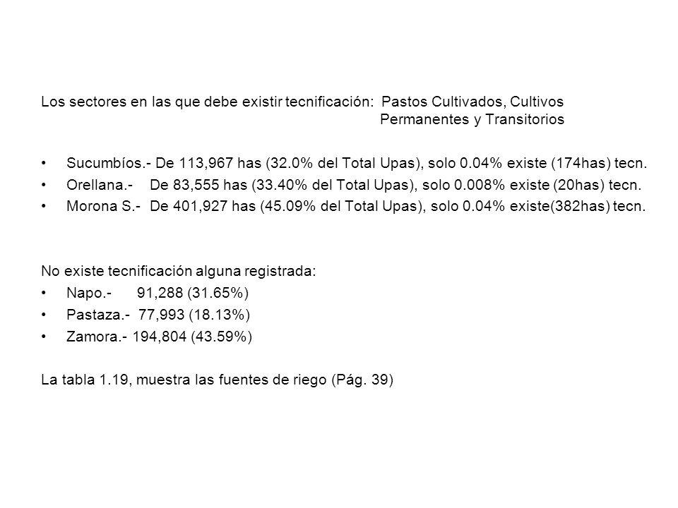 Los sectores en las que debe existir tecnificación: Pastos Cultivados, Cultivos Permanentes y Transitorios Sucumbíos.- De 113,967 has (32.0% del Total