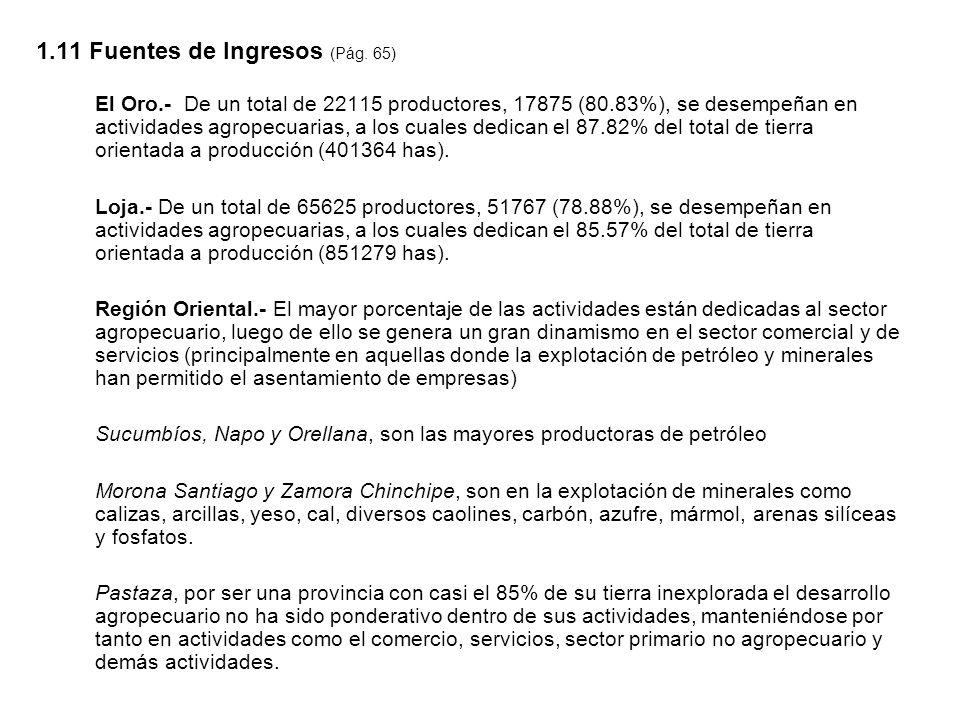 1.11 Fuentes de Ingresos (Pág. 65) El Oro.- De un total de 22115 productores, 17875 (80.83%), se desempeñan en actividades agropecuarias, a los cuales