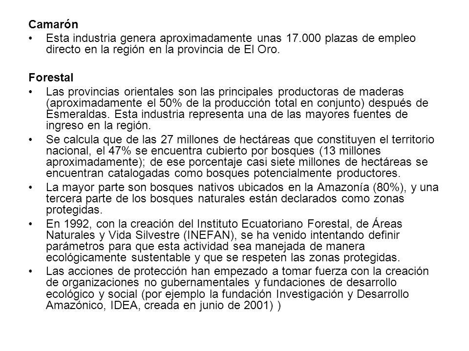 Camarón Esta industria genera aproximadamente unas 17.000 plazas de empleo directo en la región en la provincia de El Oro. Forestal Las provincias ori