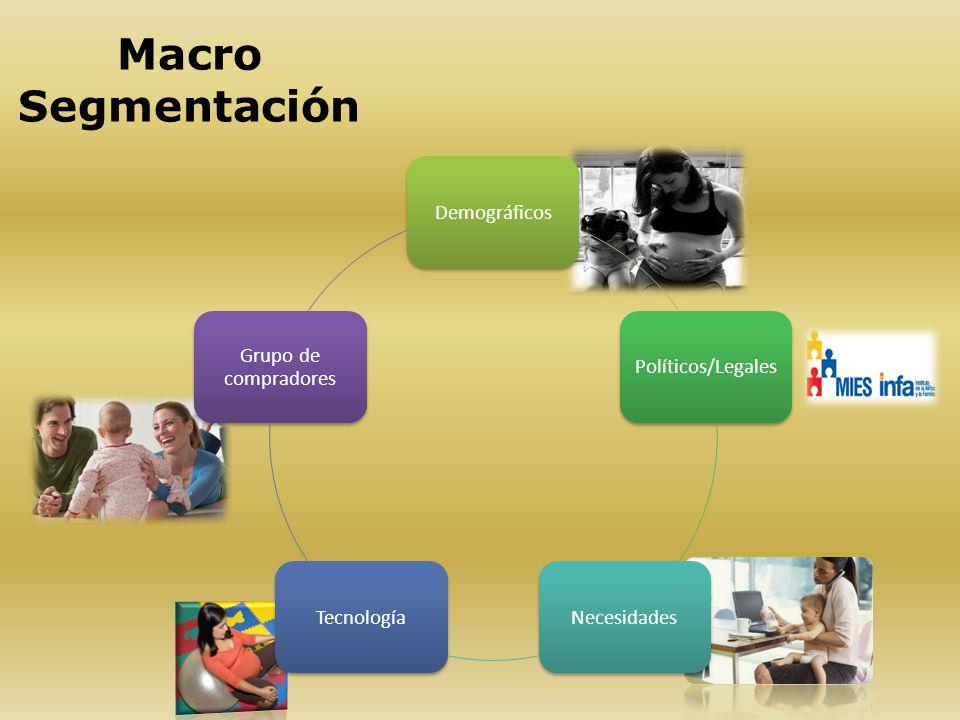 Macro Segmentación DemográficosPolíticos/LegalesNecesidadesTecnología Grupo de compradores