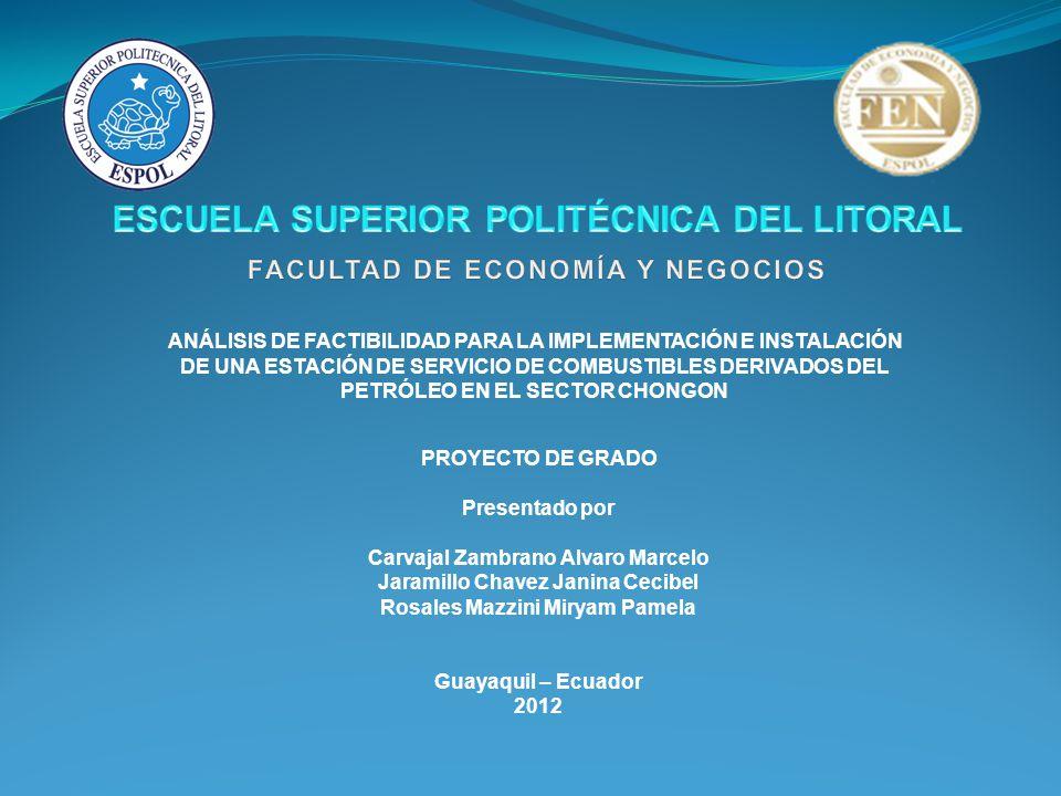 ANÁLISIS DE LA DEMANDA Clientes Potenciales El parque automotor en Guayas está estimado en 310 mil vehículos, de los cuales, el 80% rueda en Guayaquil.