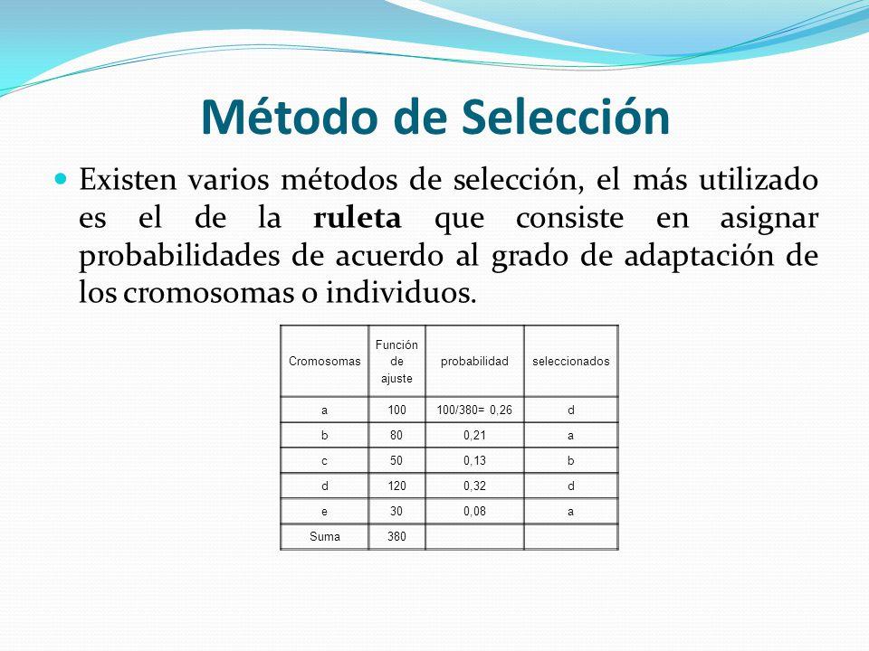 Método de Selección Existen varios métodos de selección, el más utilizado es el de la ruleta que consiste en asignar probabilidades de acuerdo al grado de adaptación de los cromosomas o individuos.