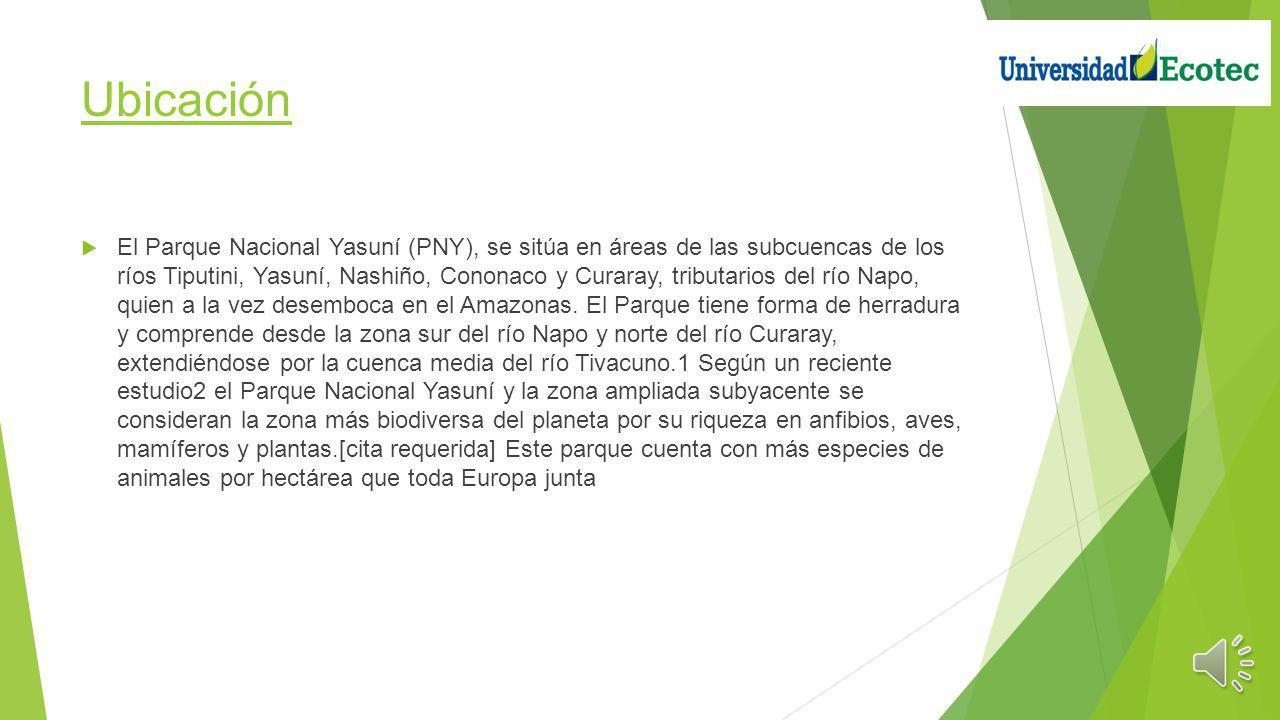 Ubicación El Parque Nacional Yasuní (PNY), se sitúa en áreas de las subcuencas de los ríos Tiputini, Yasuní, Nashiño, Cononaco y Curaray, tributarios del río Napo, quien a la vez desemboca en el Amazonas.