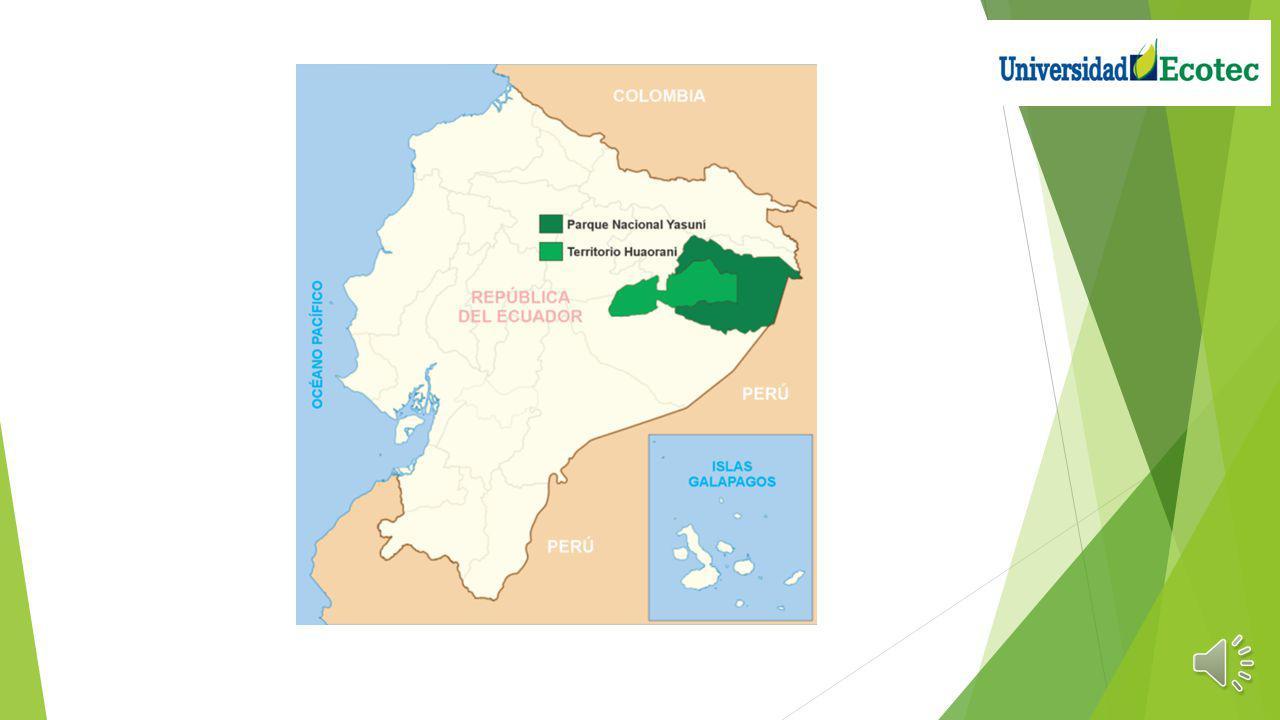 Ubicación El Parque Nacional Yasuní (PNY), se sitúa en áreas de las subcuencas de los ríos Tiputini, Yasuní, Nashiño, Cononaco y Curaray, tributarios