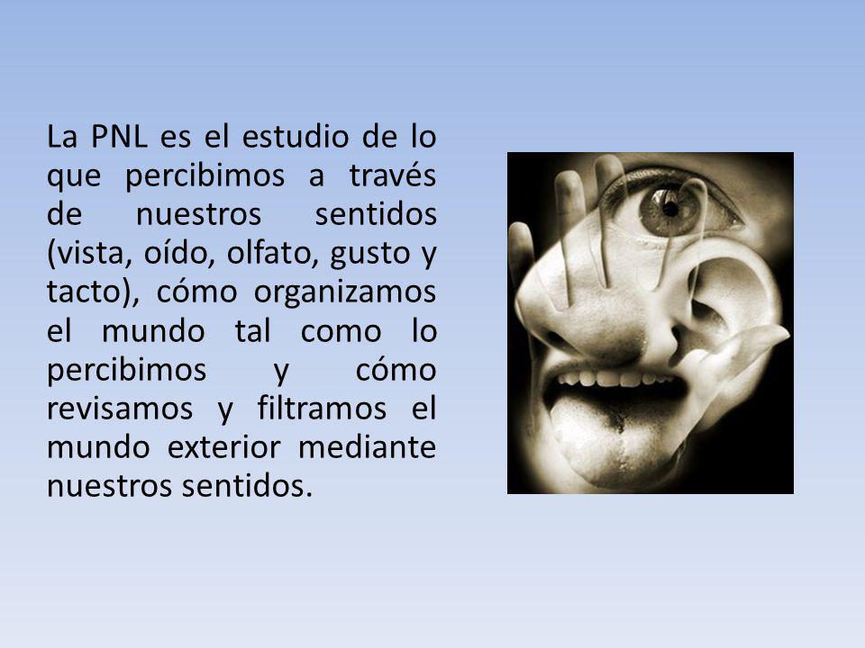 La PNL es el estudio de lo que percibimos a través de nuestros sentidos (vista, oído, olfato, gusto y tacto), cómo organizamos el mundo tal como lo pe