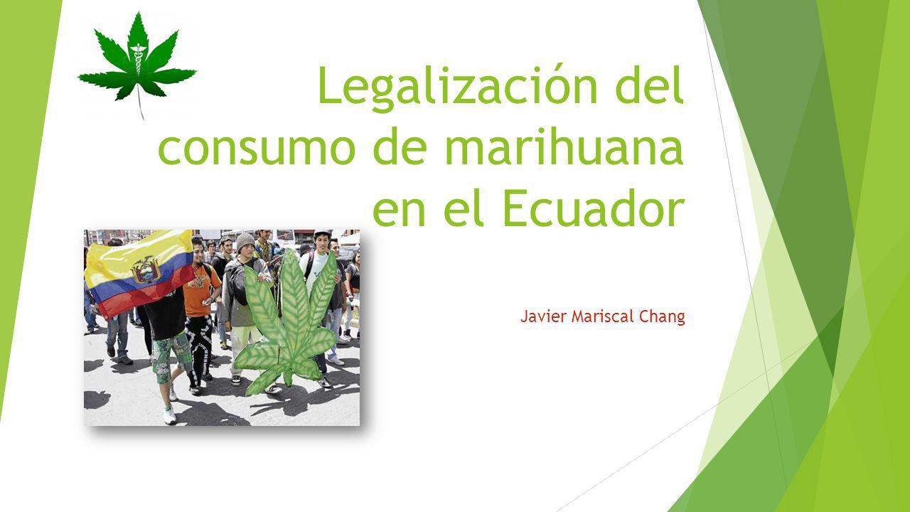 Legalización del consumo de marihuana en el Ecuador Javier Mariscal Chang