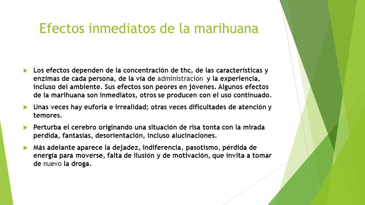 Efectos inmediatos de la marihuana Los efectos dependen de la concentración de thc, de las características y enzimas de cada persona, de la vía de adm