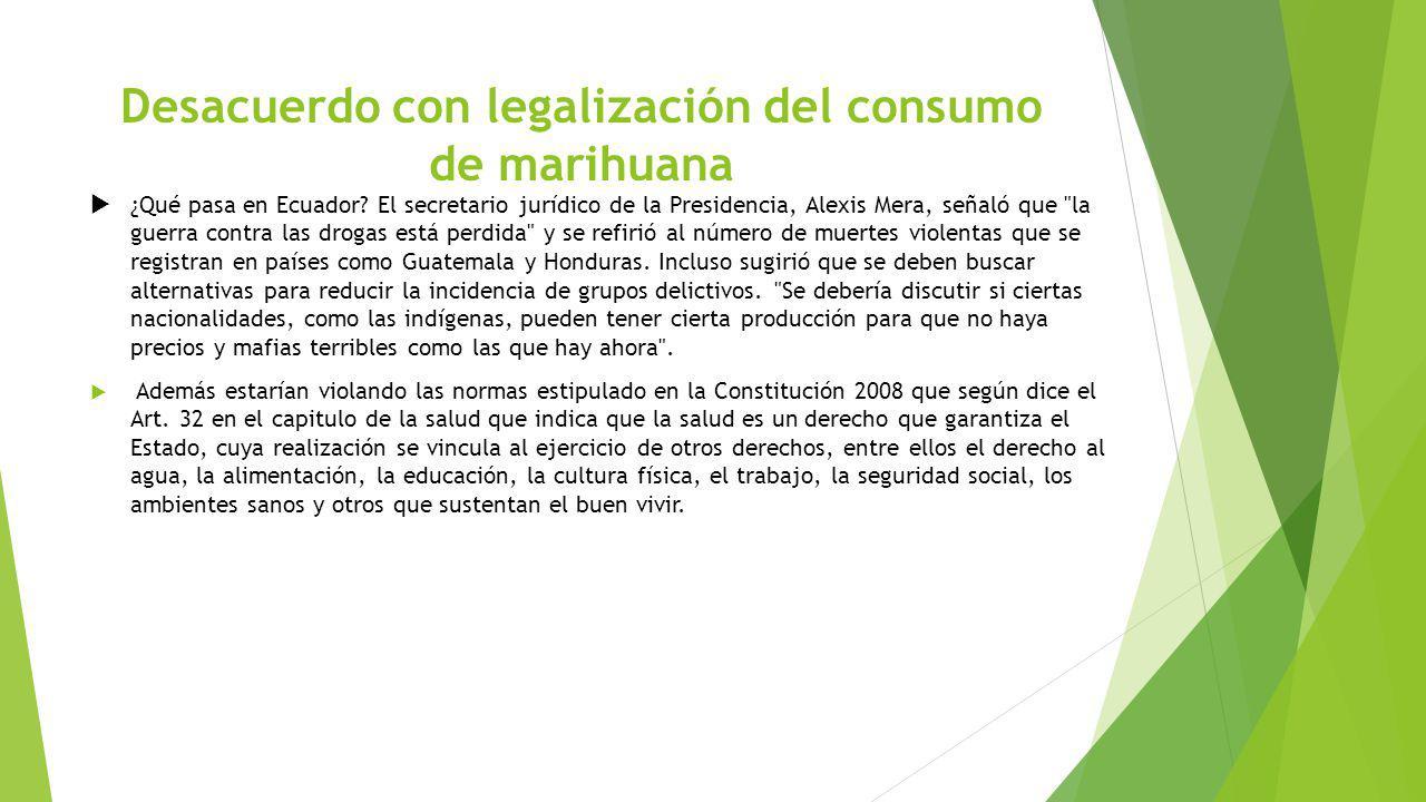 Desacuerdo con legalización del consumo de marihuana ¿Qué pasa en Ecuador? El secretario jurídico de la Presidencia, Alexis Mera, señaló que
