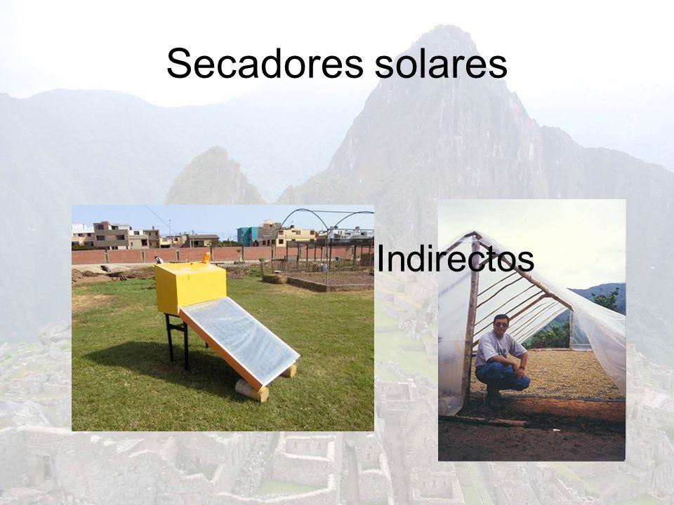 Secadores solares DirectosIndirectos