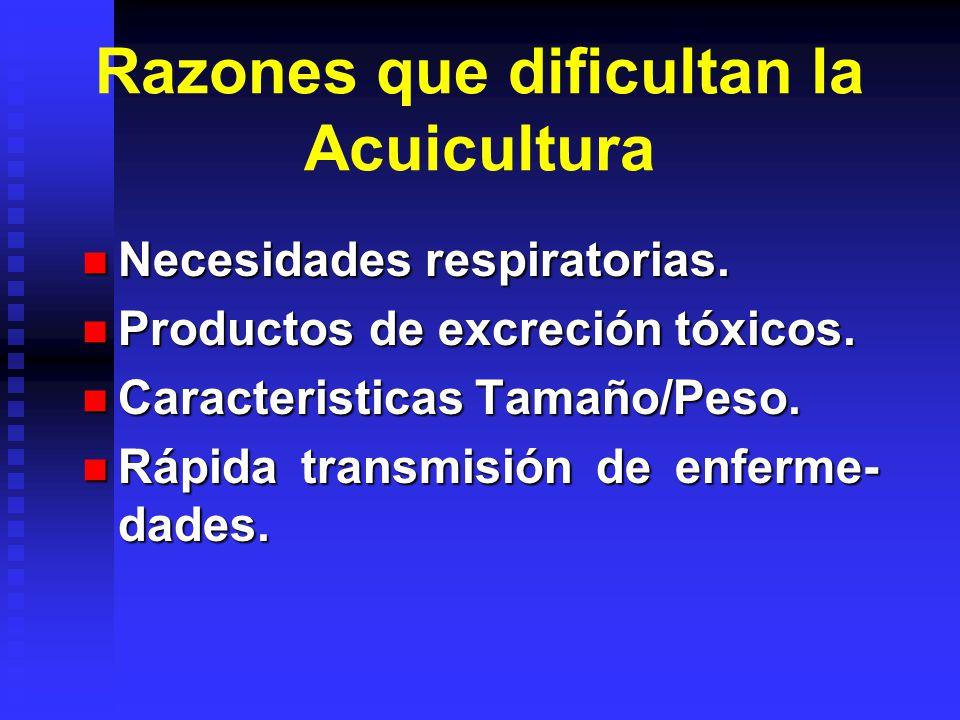 Razones que dificultan la Acuicultura Necesidades respiratorias. Necesidades respiratorias. Productos de excreción tóxicos. Productos de excreción tóx