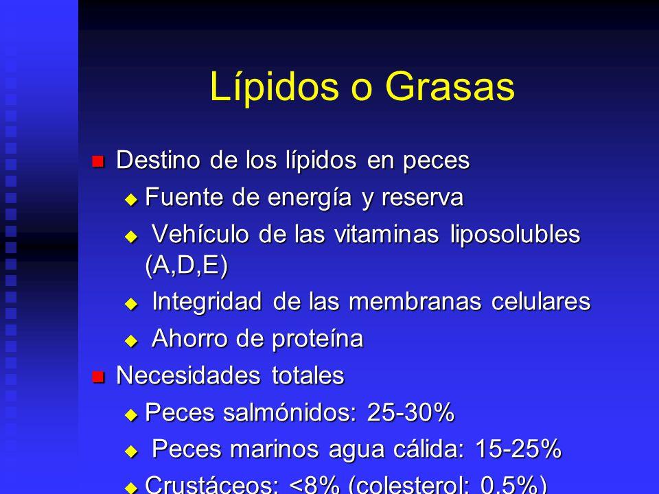 Lípidos o Grasas Destino de los lípidos en peces Destino de los lípidos en peces Fuente de energía y reserva Fuente de energía y reserva Vehículo de l