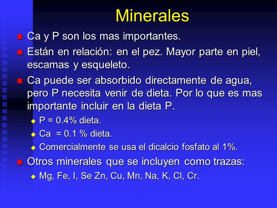 Minerales Ca y P son los mas importantes. Ca y P son los mas importantes. Están en relación: en el pez. Mayor parte en piel, escamas y esqueleto. Está