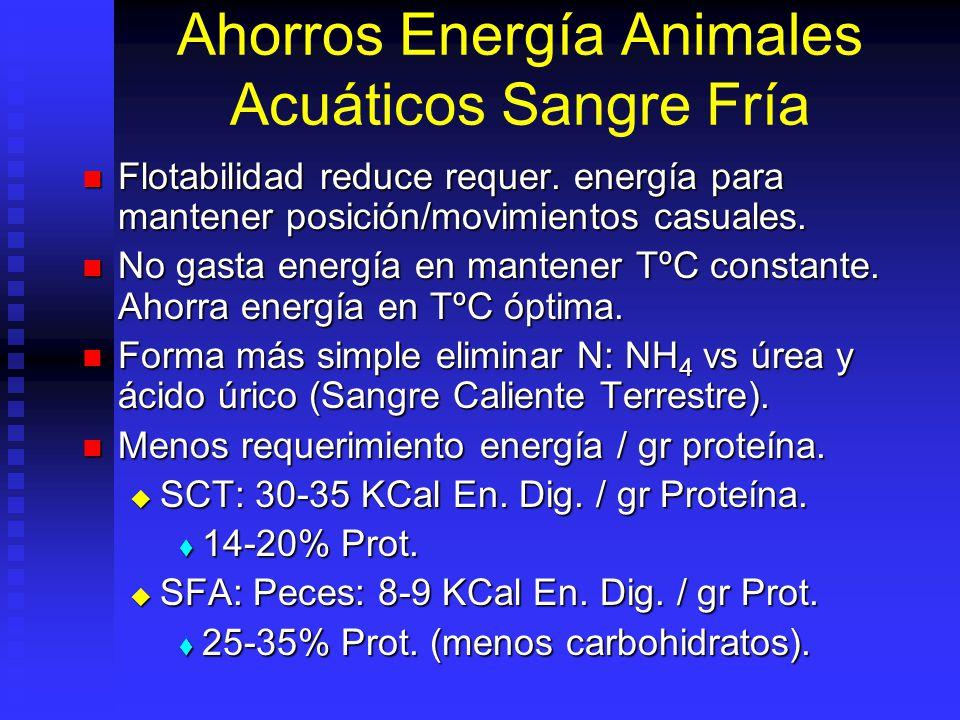 Lípidos o Grasas Destino de los lípidos en peces Destino de los lípidos en peces Fuente de energía y reserva Fuente de energía y reserva Vehículo de las vitaminas liposolubles (A,D,E) Vehículo de las vitaminas liposolubles (A,D,E) Integridad de las membranas celulares Integridad de las membranas celulares Ahorro de proteína Ahorro de proteína Necesidades totales Necesidades totales Peces salmónidos: 25-30% Peces salmónidos: 25-30% Peces marinos agua cálida: 15-25% Peces marinos agua cálida: 15-25% Crustáceos: <8% (colesterol: 0.5%) Crustáceos: <8% (colesterol: 0.5%)