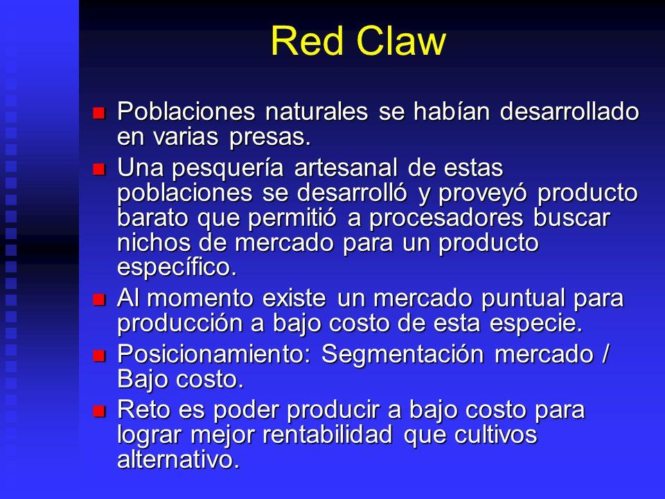 Red Claw Poblaciones naturales se habían desarrollado en varias presas. Poblaciones naturales se habían desarrollado en varias presas. Una pesquería a