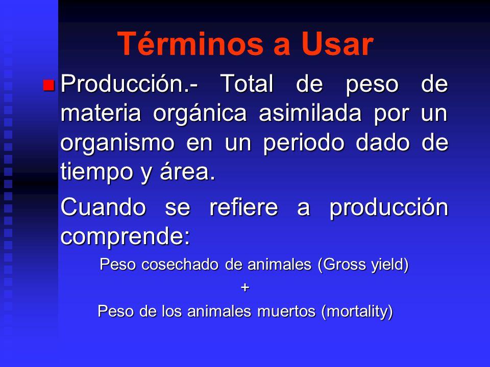 Términos a Usar Producción.- Total de peso de materia orgánica asimilada por un organismo en un periodo dado de tiempo y área. Producción.- Total de p