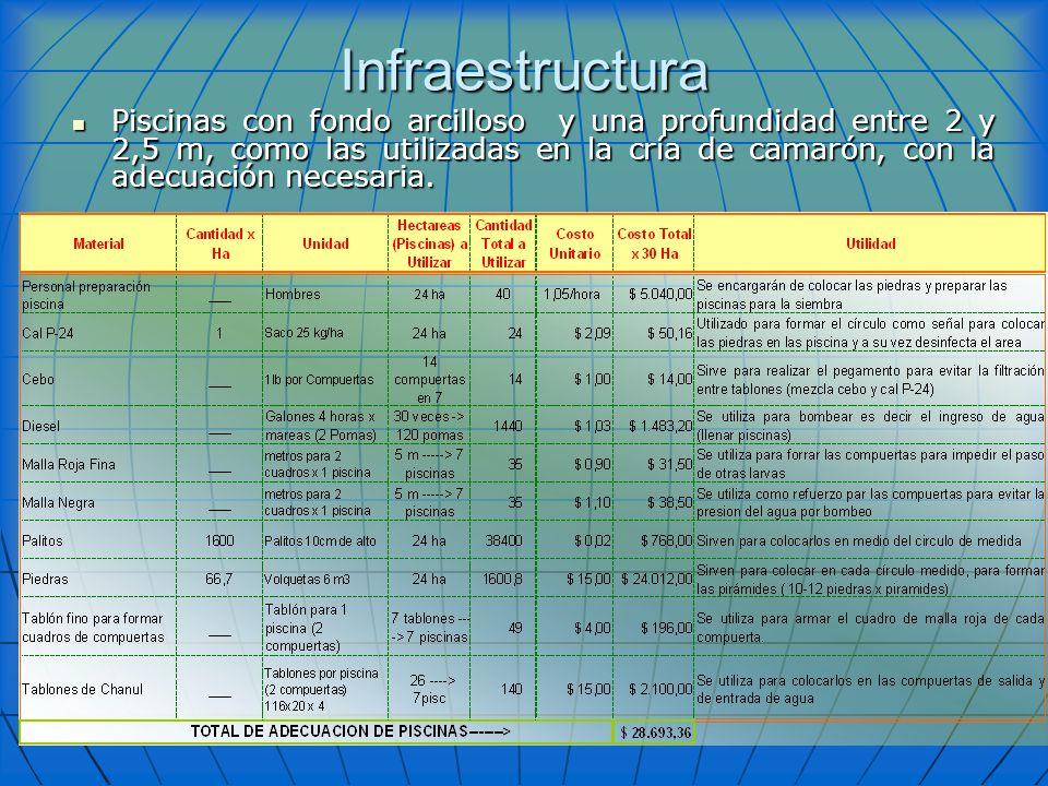 Infraestructura Piscinas con fondo arcilloso y una profundidad entre 2 y 2,5 m, como las utilizadas en la cría de camarón, con la adecuación necesaria