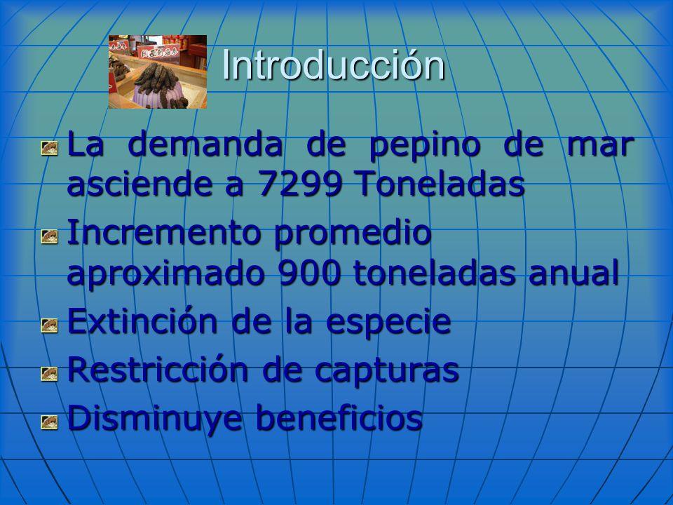 La demanda de pepino de mar asciende a 7299 Toneladas Incremento promedio aproximado 900 toneladas anual Extinción de la especie Restricción de captur