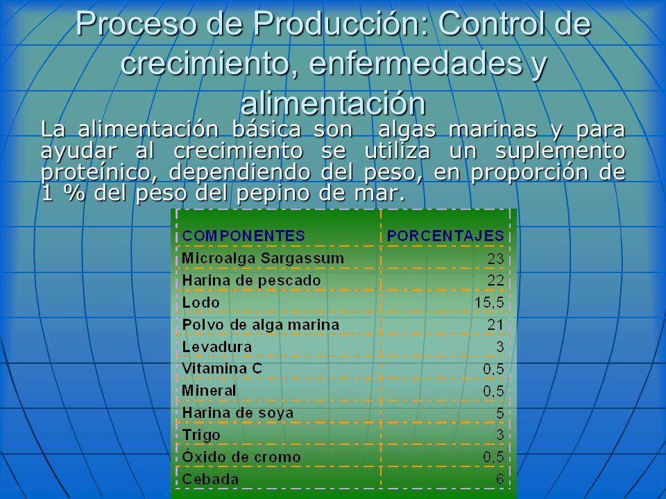 Proceso de Producción: Control de crecimiento, enfermedades y alimentación La alimentación básica son algas marinas y para ayudar al crecimiento se ut