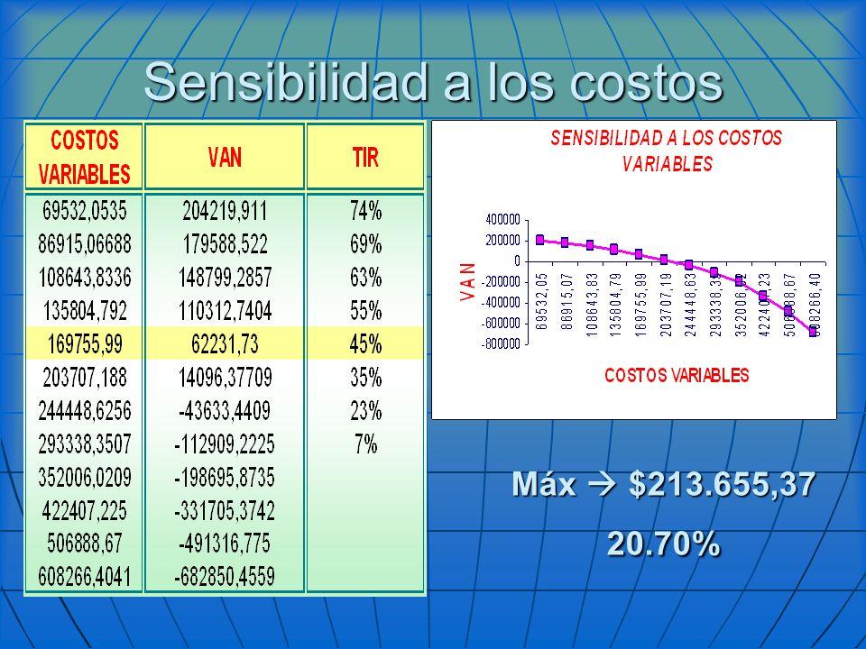 Sensibilidad a los costos Máx $213.655,37 20.70%