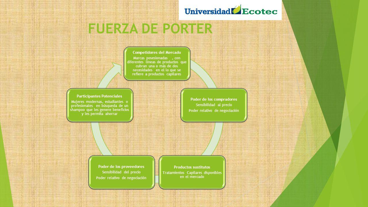FUERZA DE PORTER Competidores del Mercado Marcas posesionadas, con diferentes líneas de productos que cubran una o más de dos necesidades en el lo que