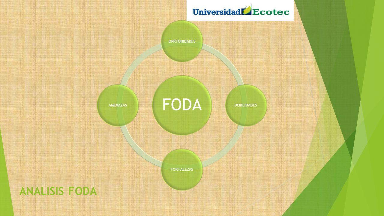 FORTALEZAS Un producto diferenciador con muchos beneficios integrados Segmento claro y con posibilidades de compra