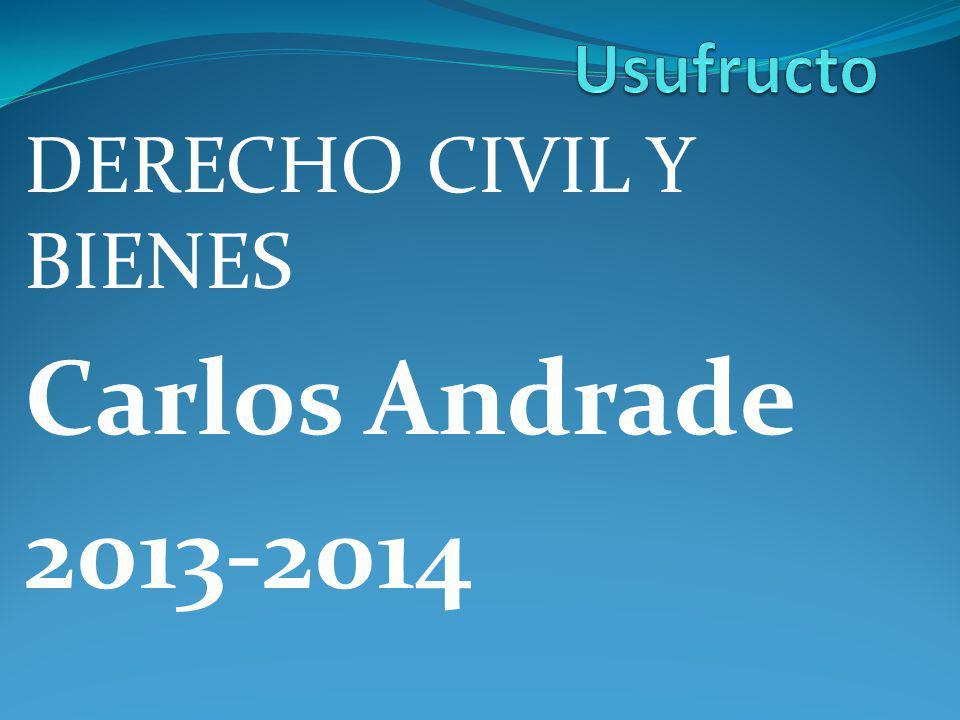 DERECHO CIVIL Y BIENES Carlos Andrade 2013-2014
