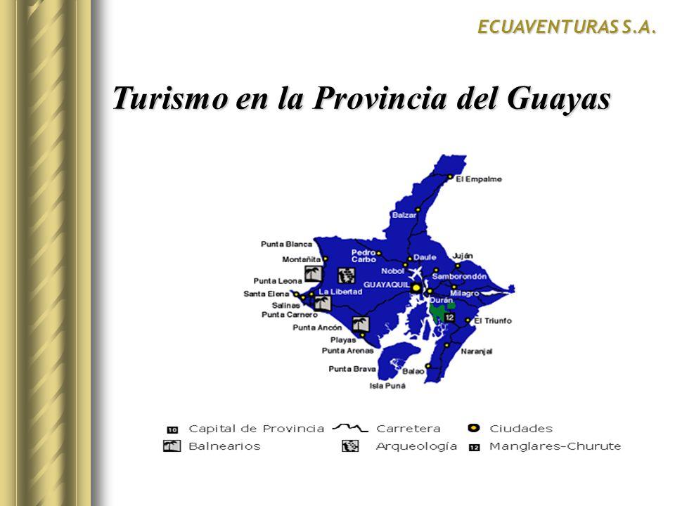 Resultados de la Encuesta ECUAVENTURAS S.A.SurCentroNorte SI 11.
