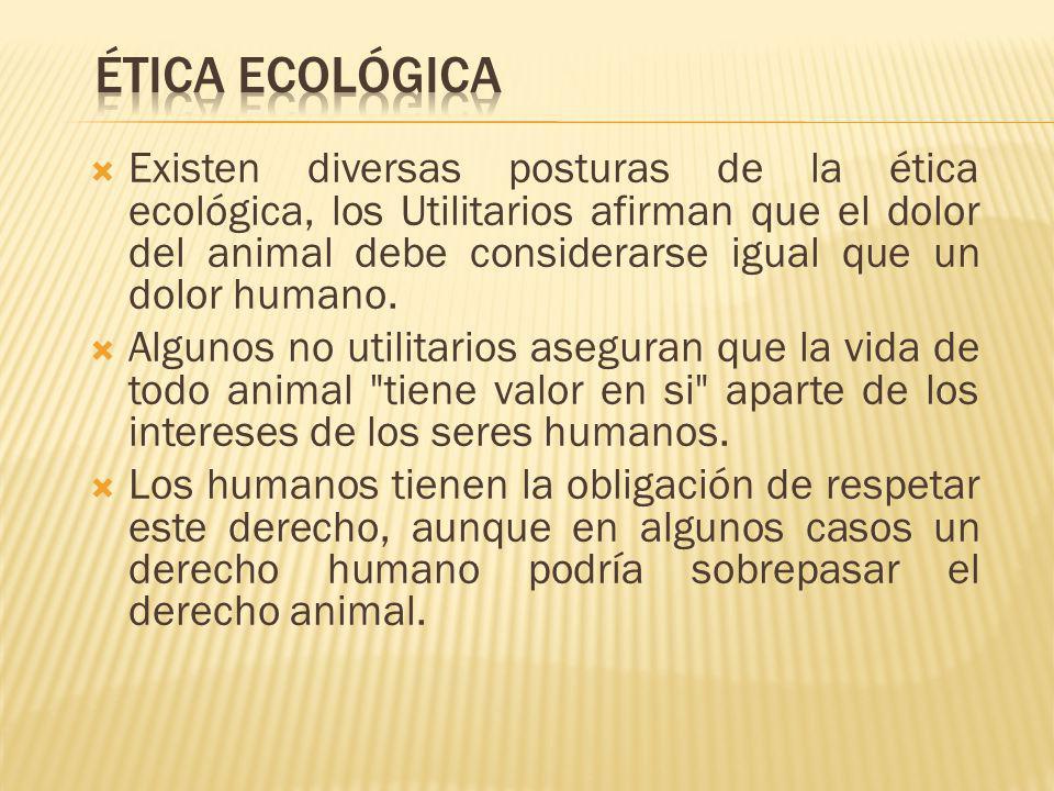 Existen diversas posturas de la ética ecológica, los Utilitarios afirman que el dolor del animal debe considerarse igual que un dolor humano. Algunos