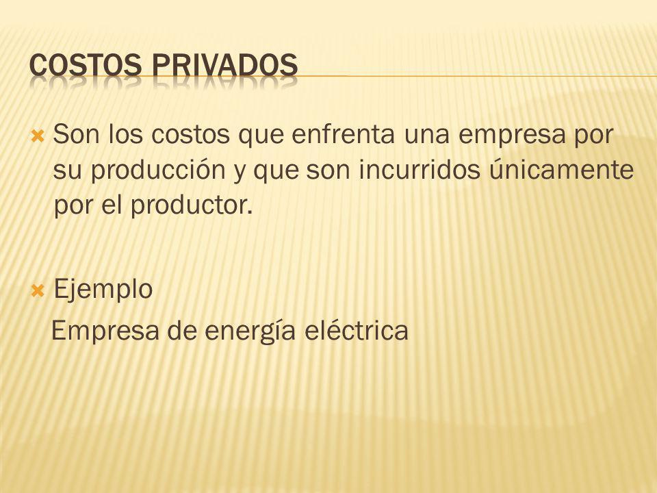 Son los costos que enfrenta una empresa por su producción y que son incurridos únicamente por el productor. Ejemplo Empresa de energía eléctrica