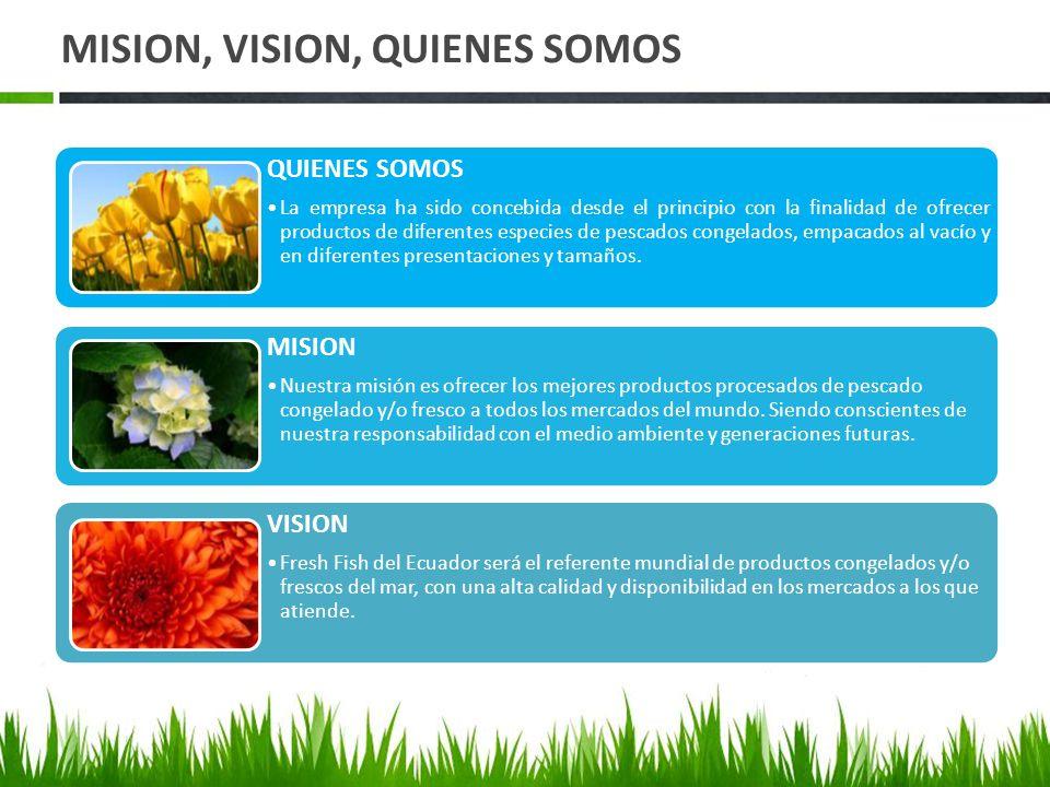MISION, VISION, QUIENES SOMOS QUIENES SOMOS La empresa ha sido concebida desde el principio con la finalidad de ofrecer productos de diferentes especies de pescados congelados, empacados al vacío y en diferentes presentaciones y tamaños.