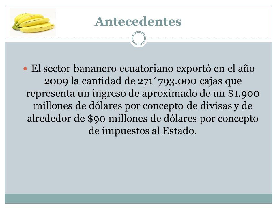 Antecedentes El sector bananero ecuatoriano exportó en el año 2009 la cantidad de 271´793.000 cajas que representa un ingreso de aproximado de un $1.9