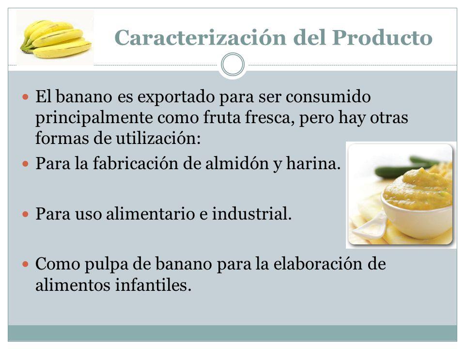 Caracterización del Producto El banano es exportado para ser consumido principalmente como fruta fresca, pero hay otras formas de utilización: Para la fabricación de almidón y harina.