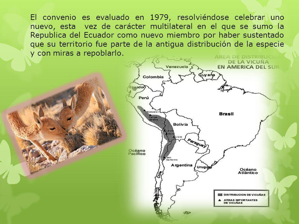 ANTECEDENTES DEL CONVENIO Suscrito en Lima el 20 de Diciembre de 1979 por Argentina, Bolivia, Chile, Ecuador y Perú, bajo la denominación de CONVENIO PARA LA CONSERVACION Y MANEJO DE LA VICUÑA, en reemplazo del instrumento firmado entre Perú y Bolivia en 1969.