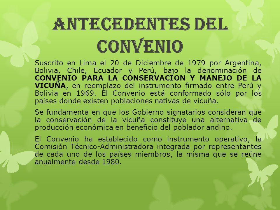 IMPORTANCIA Y LOGROS DEL CONVENIO EN ECUADOR La vicuña es parte del Patrimonio Nacional del Estado y por lo tanto su conservación es de interés público y todas las actividades de gestión de esta especie estarán bajo control del Ministerio del Ambiente.
