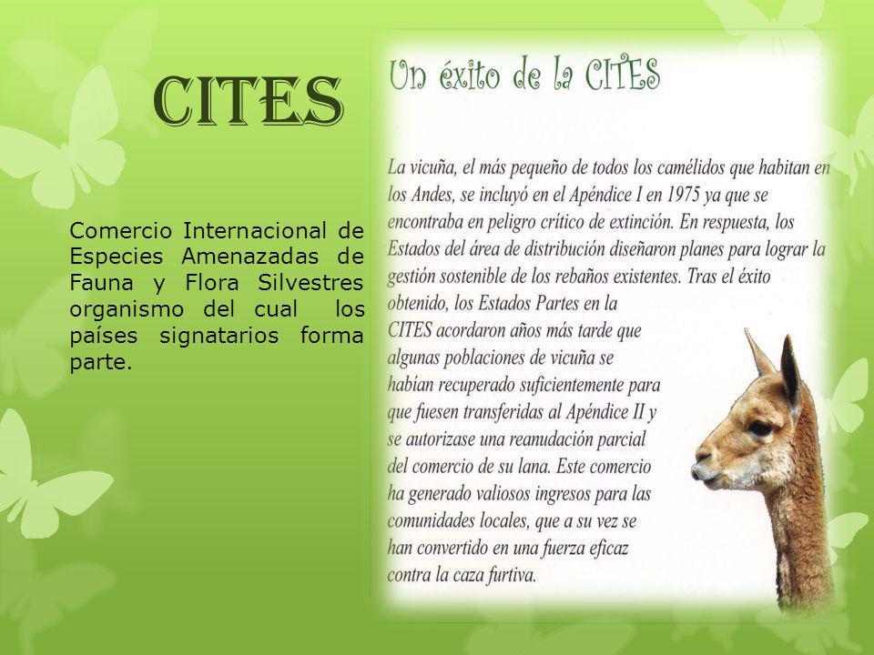 Comercio Internacional de Especies Amenazadas de Fauna y Flora Silvestres organismo del cual los países signatarios forma parte. CITES
