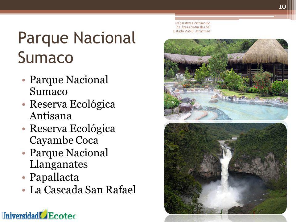 Parque Nacional Sumaco Reserva Ecológica Antisana Reserva Ecológica Cayambe Coca Parque Nacional Llanganates Papallacta La Cascada San Rafael 10 Subsi