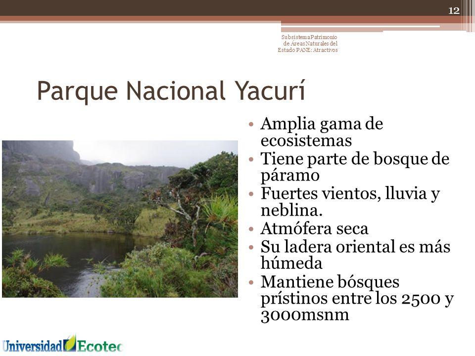 Parque Nacional Yacurí Amplia gama de ecosistemas Tiene parte de bosque de páramo Fuertes vientos, lluvia y neblina. Atmófera seca Su ladera oriental