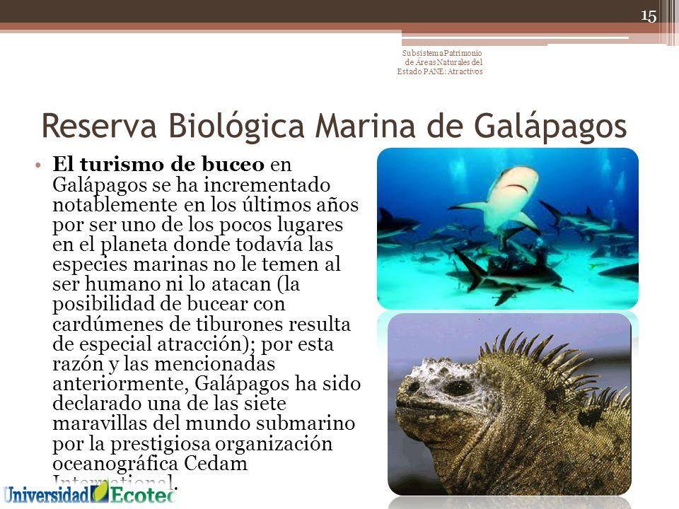 Reserva Biológica Marina de Galápagos El turismo de buceo en Galápagos se ha incrementado notablemente en los últimos años por ser uno de los pocos lu