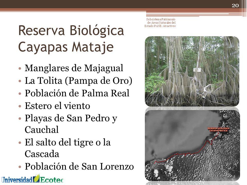 Reserva Biológica Cayapas Mataje Manglares de Majagual La Tolita (Pampa de Oro) Población de Palma Real Estero el viento Playas de San Pedro y Cauchal