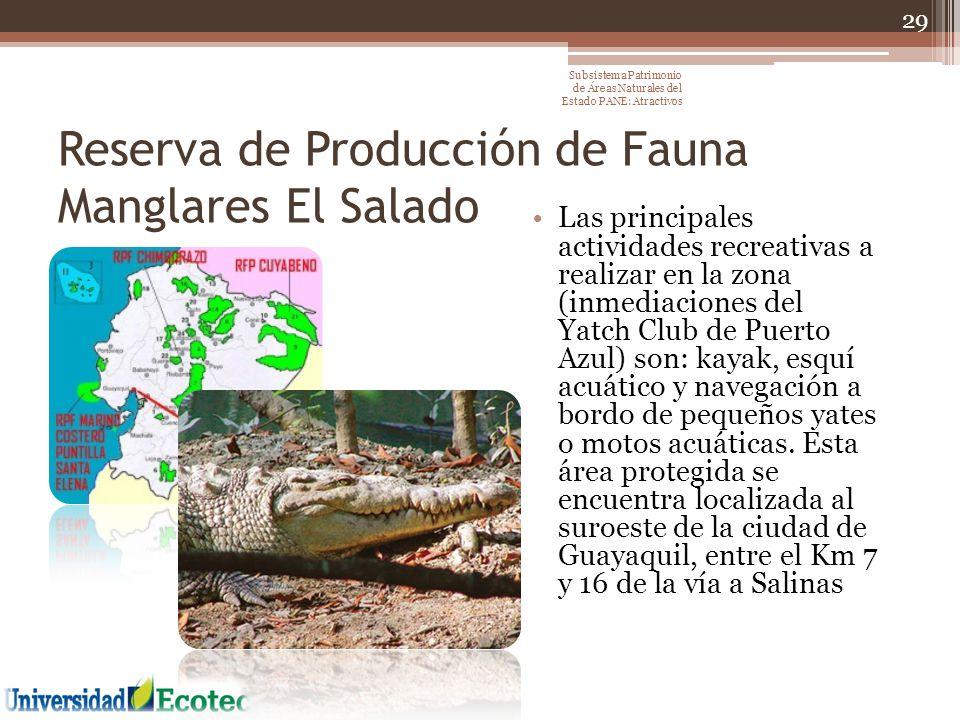 Reserva de Producción de Fauna Manglares El Salado Las principales actividades recreativas a realizar en la zona (inmediaciones del Yatch Club de Puer