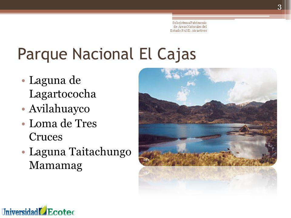 Parque Nacional El Cajas Laguna de Lagartococha Avilahuayco Loma de Tres Cruces Laguna Taitachungo Mamamag 3 Subsistema Patrimonio de Áreas Naturales
