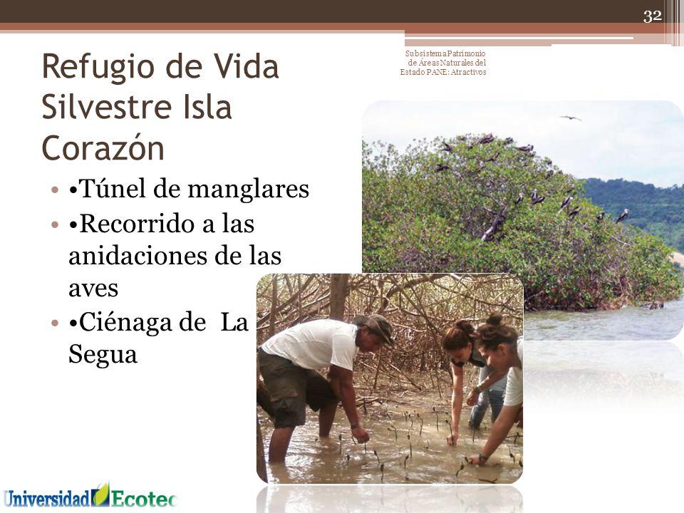 Refugio de Vida Silvestre Isla Corazón Túnel de manglares Recorrido a las anidaciones de las aves Ciénaga de La Segua 32 Subsistema Patrimonio de Área