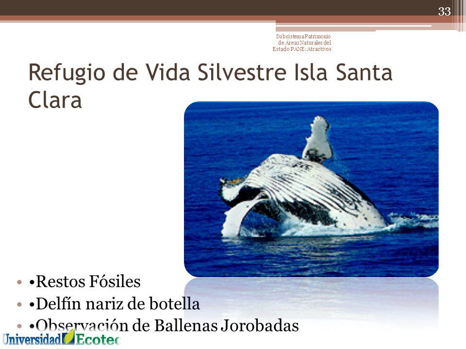 Refugio de Vida Silvestre Isla Santa Clara Restos Fósiles Delfín nariz de botella Observación de Ballenas Jorobadas 33 Subsistema Patrimonio de Áreas