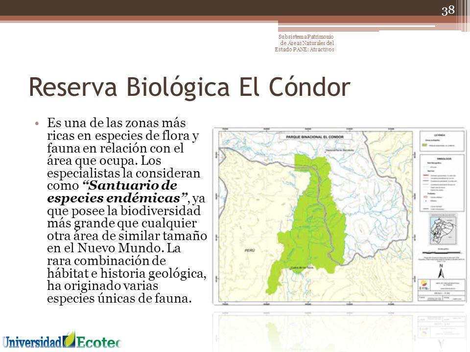 Reserva Biológica El Cóndor Es una de las zonas más ricas en especies de flora y fauna en relación con el área que ocupa. Los especialistas la conside