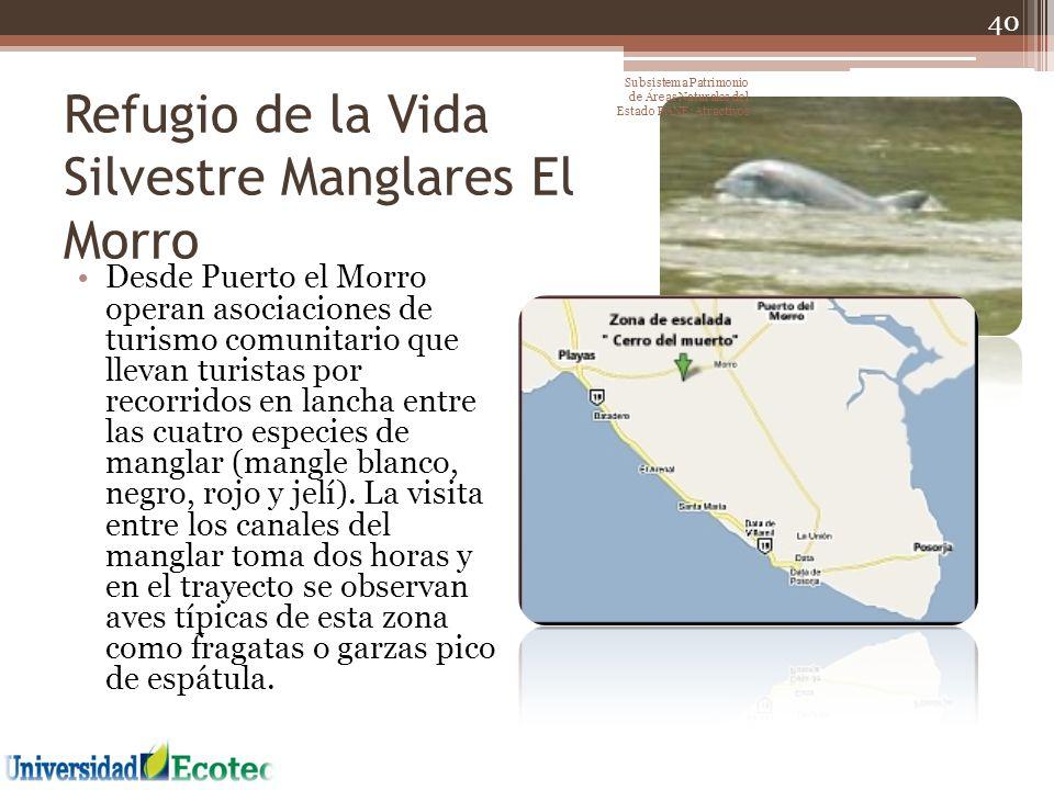 Refugio de la Vida Silvestre Manglares El Morro Desde Puerto el Morro operan asociaciones de turismo comunitario que llevan turistas por recorridos en