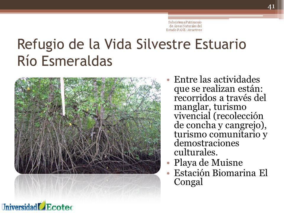Refugio de la Vida Silvestre Estuario Río Esmeraldas Entre las actividades que se realizan están: recorridos a través del manglar, turismo vivencial (